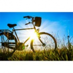 Fahrradzubeh�r