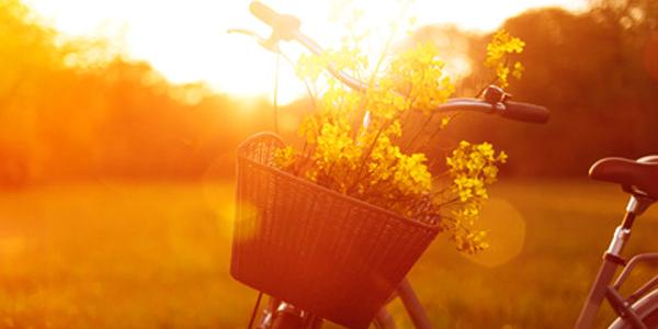 Fahrradteile Online